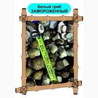 ОПТОМ Белые замороженные грибы