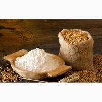 Продаю сахар, мука по оптовым ценам от 20 тонн
