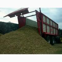 Силос травяной, кукурузный