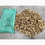 Продаём картофель нового урожая 2017 (Египет)