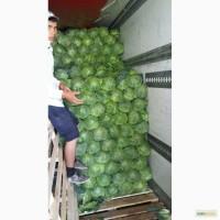 Фрукты овощи консервация