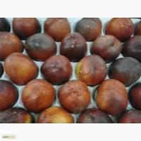 Свежие персики и Нектарины из Марокко