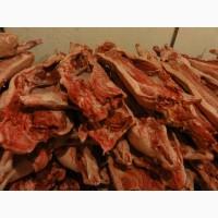 Свинина оптом