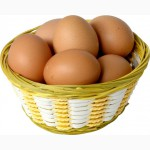 Предлагаем всегда свежее домашнее мясо птицы, кроликов и яйца с личного подворья