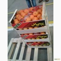 Апельсины из Марокко
