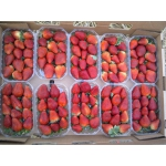 Продам клубнику, производства Египет