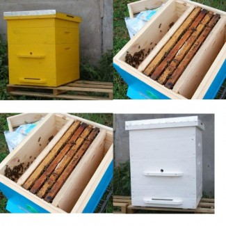 Ульи предназначенные для расширения (развития) приобретенных пчелопакетов