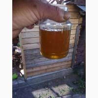 Мёд оптом от производителя урожай 2020 года