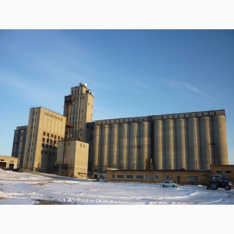 Продажа элеватора новосибирская область цепь пластинчатая конвейера
