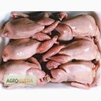 Перепелиное мясо (тушки)