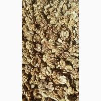 Продается очищенный грецкий орех
