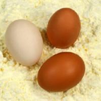 Яичный порошок (сухой яичный меланж) ГОСТ 30363-2013