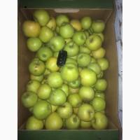 Содовое товарищество реализует яблоко различных сортов оптом