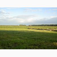 Продам участок сельхозназначения 64 ГА