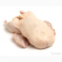 Продам мясо утки