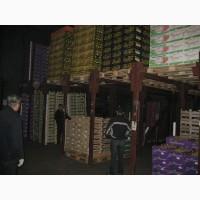 Продаю склад холодильник на 2400тн в Ростове