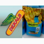 Семена кукурузы МОНСАНТО ДКС 4014(ФАО 340)