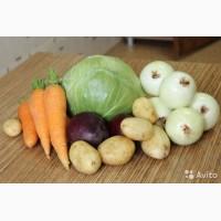 Фермерский картофель, овощи