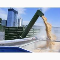 Услуги перевалки зерновых по воде