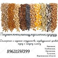 Пшеницу куплю