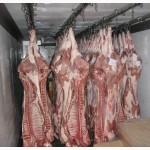 Мясо-свинина в полутушах 2 и 3 категории оптом ГОСТ Р 53221-2008