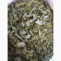 Кипрей узколистый(Иван-чай) лист 2017 год (оптом от 5кг)