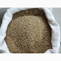 Пшеница фураж 10 000 тонн (Омская область)
