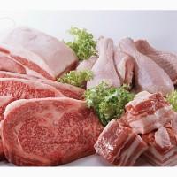 Куплю мясо говядины, свинину, птицу! РФ, РБ