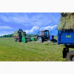 Сено кормовое, посевное, зеленое, душистое Урожай 2017 г