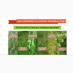 Сено кормовое, посевное, зеленое, душистое Урожай 2019 г