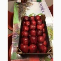 Яблоки из Молдовы