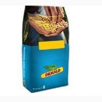 Семена кукурузы ДКС 2949 (Монсанто)