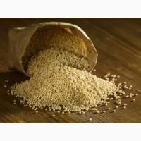 ООО НПП «Зарайские семена» закупает семена просо жёлтого и красного