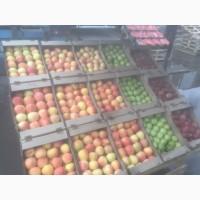 Продам яблоки сортов Гала, голден, рэд делишон из Казахстана