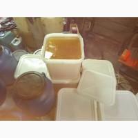 Продам мёд липы, с личной пасеки, Приморский край