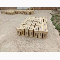 Пчелопакеты карпатка с доставкой