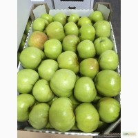 Продам яблоки красных и зеленых сортов