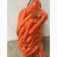 Морковь свежая урожай 2017. Мытая