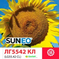 ЛГ 5542 КЛ гибрид технологии SUNEO (Clearfield+ устойчивость к 7 расам заразихи) ЛИМАГРЕЙ