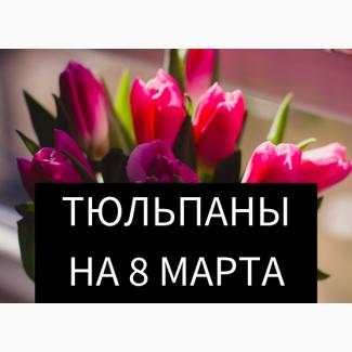 Тюльпаны к 8 марта оптом от 50 штук
