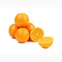 Закупаем Апельсин от 1 до 20 тонн на постоянной основе
